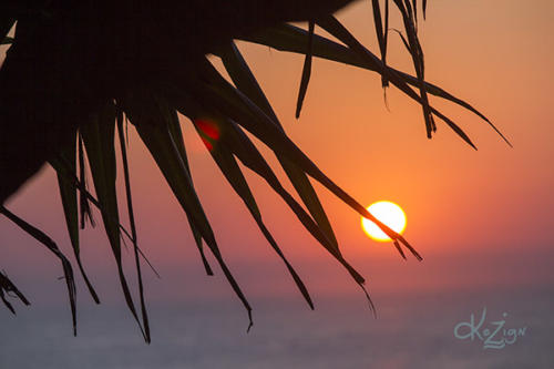 sunrise, coolum beach, sunshine coast