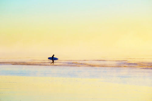 Dawn Surfer amid misty ocean